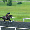 Caption:  Independence Hall with Alvaro Quinteros<br /> A native of Oklahoma, Heath started working at WinStar Farm on October 10, 2014, and became the farm trainer in October of 2018. Presently he has about 100 horses in training at the WinStar Farm training center, where they have a 7 1/2-furlong main track and 3/4 of a mile undulating turf gallop.<br /> Daily Life series on Destin Heath, farm trainer at WinStar Farm on Aug. 11, 2020 WinStar Farm in Versailles, KY.