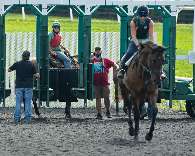 Caption: Destin watches from behind gate during a starting gate session after Quality with Jess Woodall has left the starting gate.<br /> A native of Oklahoma, Heath started working at WinStar Farm on October 10, 2014, and became the farm trainer in October of 2018. Presently he has about 100 horses in training at the WinStar Farm training center, where they have a 7 1/2-furlong main track and 3/4 of a mile undulating turf gallop.<br /> Daily Life series on Destin Heath, farm trainer at WinStar Farm on Aug. 11, 2020 WinStar Farm in Versailles, KY.