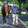 Hip 642 Fearless from Elite Sales<br /> Scenes, people and horses at The July Sale at Fasig-Tipton near Lexington, Ky. on July 12, 2021.