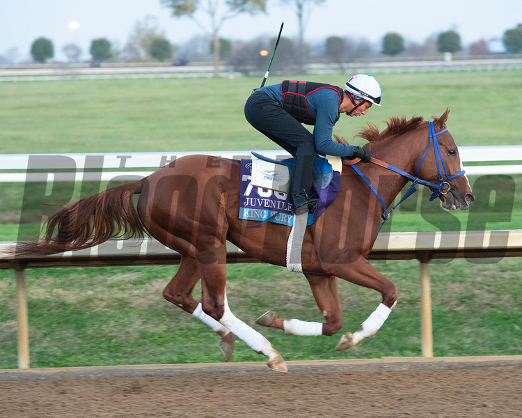 King Fury<br /> Breeders' Cup horses at Keeneland in Lexington, Ky. on November 5, 2020.