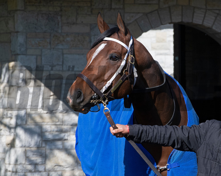 Hidden Scroll<br /> Scenes from opening day at Keeneland near Lexington, Ky., on April 2, 2021.