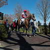 2yo American Bound walking to the paddock for race 3. <br /> Scenes from opening day at Keeneland near Lexington, Ky., on April 2, 2021.