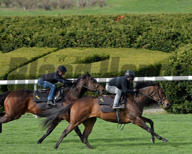 Lady Aurelia (outside in lead) in company with Bound for Nowhere working at Keeneland on April 2, 2017.