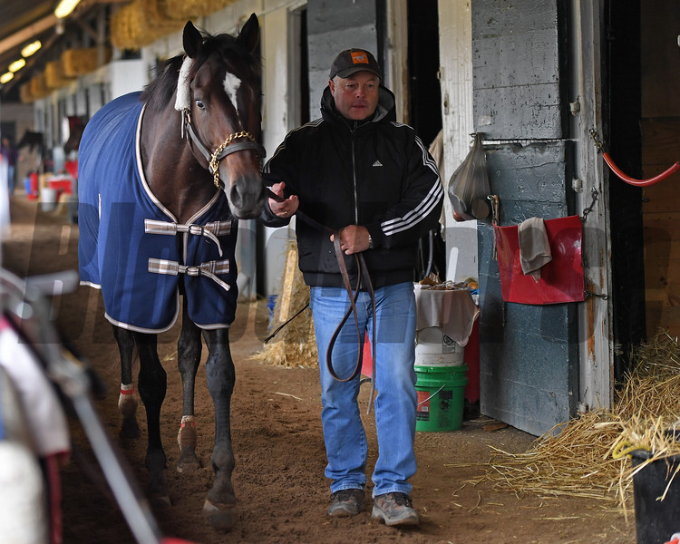 Ian Wilkes walking McCraken in shedrow after work.<br /> McCraken with Brian Hernandez Jr. at Keeneland on April 2, 2017 at Keeneland on April 2, 2017.