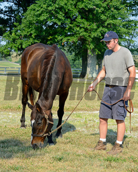 Caption: Twilight Ridge with assistant farm manager John Gray <br /> Twilight Ridge, 1985 Breeders' Cup Juvenile Filly winner, is now 29 years old and resides at Mike Rutherford's Manchester Farm near Lexington, Ky. The mare was photographed on the farm on June 29, 2012.<br /> TwilightRidgeOrigs 2 image2015<br /> Anne M. Eberhardt photo