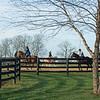 Training at Jim and Susan Hill's Margaux Farm near Midway, Ky., on Dec. 8, 2020.