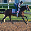 Moraz<br /> Kentucky Derby and Oaks horses, people and scenes at Churchill Downs in Louisville, Ky., on April 26, 2021.
