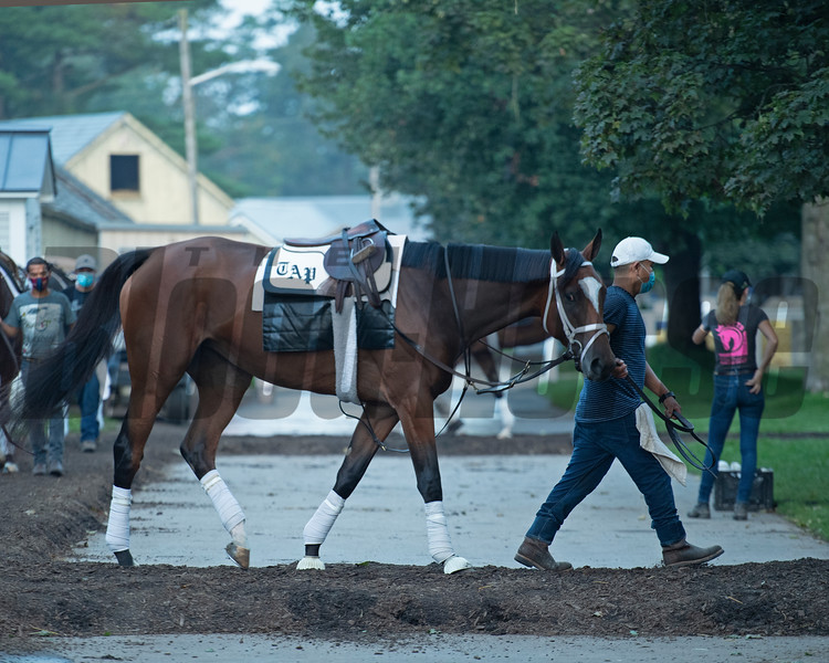 Malathaat  with groom Byron Lopez<br /> Horses in training during Travers week in Saratoga on Aug. 26, 2021.