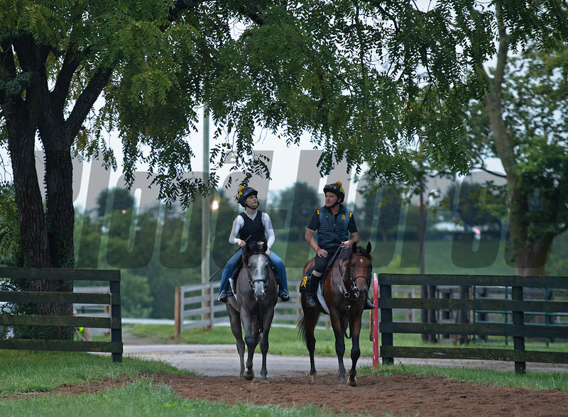 (L-R): Fair Renown with Amanda Oster and New Stripe with Archie Cross. Photo: Anne M. Eberhardt