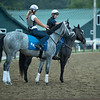 Essential Quality<br /> Saratoga racing scenes in Saratoga Springs, N.Y. on Aug. 5, 2021.