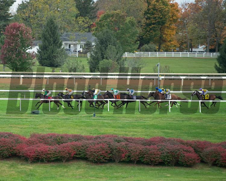 Race scene at Keeneland on October 3, 2020.