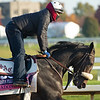Madone<br /> Breeders' Cup horses at Keeneland in Lexington, Ky. on November 5, 2020.