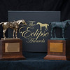 Eclipse Horse of the Year, left, and standard Eclipse Award, right.<br /> Eclipse Award images near Versailles, Ky., on Jan. 5, 2021.