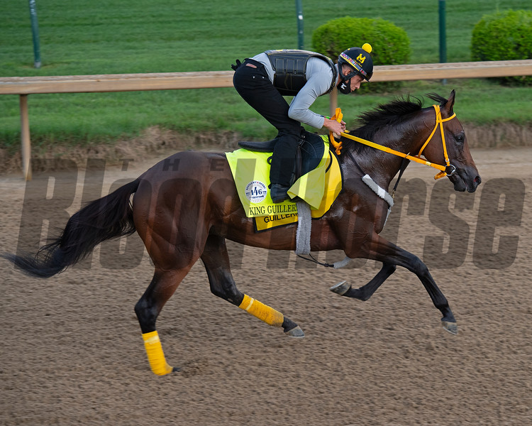 Caption: King Guillermo<br /> Kentucky Derby and Oaks training at Churchill Downs near Louisville, Ky., on Aug. 28, 2020 Churchill Downs in Louisville, KY.