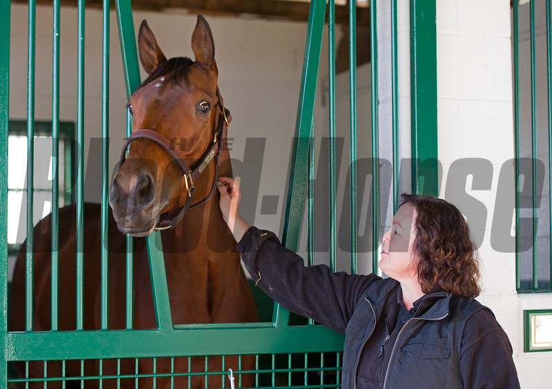 broodmare manager Aimee Compton<br /> Beholder arrives at Spendthrift Farm in Lexington, Ky., on Nov. 21, 2016, in Lexington, Ky.