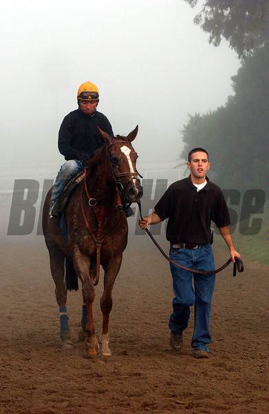 Breeders' Cup Week at Santa Anita, Oct. 18-24, Arcadia, California. Works at Hollywood Park on Oct. 19.<br /> CAPTION: Tates Creek with Patrick Valenzuela and Chad Brown<br /> BC10/19Origs2<br /> image48<br /> Photo by Anne M. Eberhardt