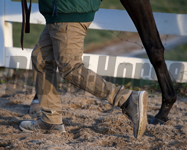handler walks horse back to barn<br /> Keeneland January Sales at Keeneland near Lexington, Ky., on Jan. 14, 2021.