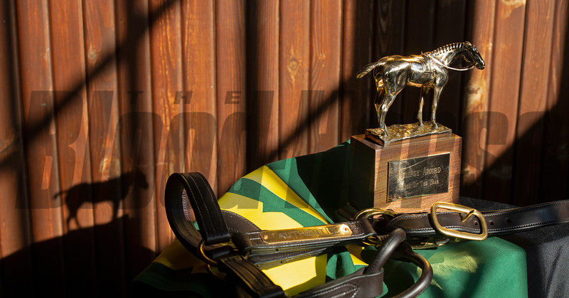 gold Horse of the Year award<br /> Eclipse Award scenes at Spendthrift Farm near Lexington, Ky., on Dec. 22, 2020.