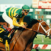 Serena's Song with Gary Stevens wins the 1995 Black-Eyed Susan at Pimlico. <br /> Photo by: Anne M. Eberhardt