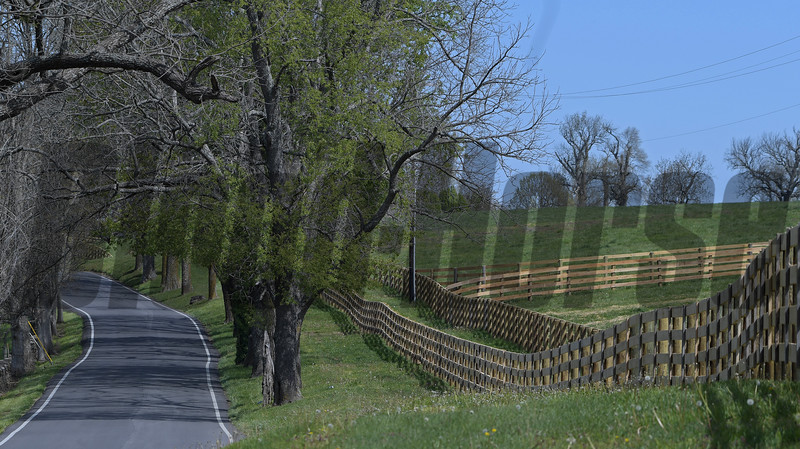 Caption: New fencing on Pisgah Pike and Brittany Farm<br />   on April 22, 2020  in Versailles, KY.