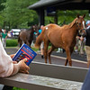 Scenes, people and horses at The July Sale at Fasig-Tipton near Lexington, Ky. on July 12, 2021.