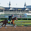 Dynamic One<br /> Kentucky Derby and Oaks horses, people and scenes at Churchill Downs in Louisville, Ky., on April 26, 2021.