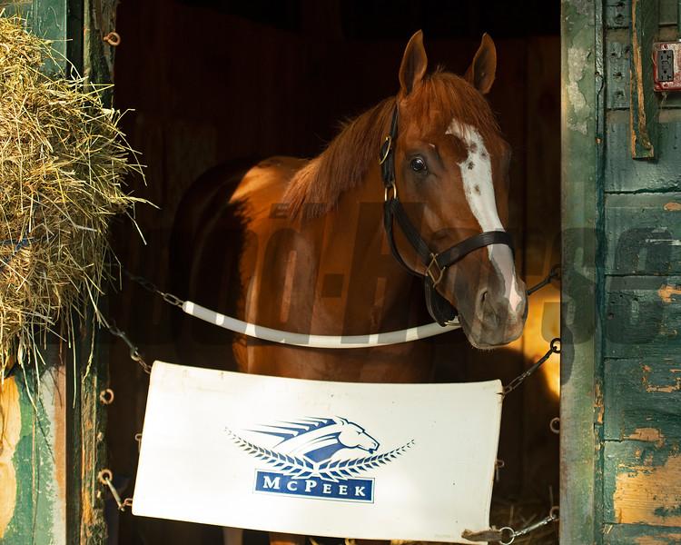King Fury<br /> Saratoga racing scenes in Saratoga Springs, N.Y. on Aug. 5, 2021.