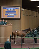 Hip1510RingPricePeople