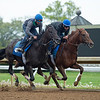 Caption: Maxfield (outside) works with Seek the Peak for Brendan. Walsh.<br /> Keeneland scenes and horses on April 25, 2020 Keeneland in Lexington, KY.