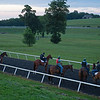 Caption: Next set walks up to Heath, third from right, before heading out to start training.<br /> A native of Oklahoma, Heath started working at WinStar Farm on October 10, 2014, and became the farm trainer in October of 2018. Presently he has about 100 horses in training at the WinStar Farm training center, where they have a 7 1/2-furlong main track and 3/4 of a mile undulating turf gallop.<br /> Daily Life series on Destin Heath, farm trainer at WinStar Farm on Aug. 11, 2020 WinStar Farm in Versailles, KY.