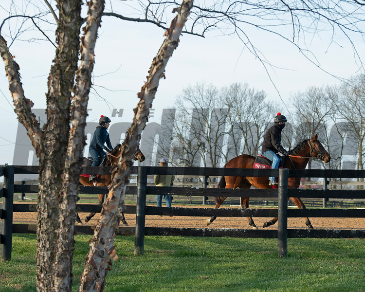 Training with Dermot Littlefield at Jim and Susan Hill's Margaux Farm near Midway, Ky., on Dec. 8, 2020.