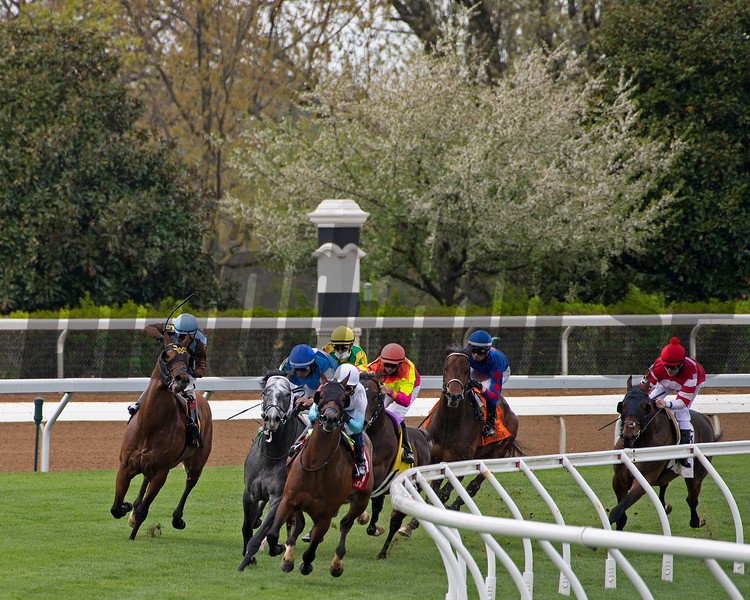 final turn in a turf race, Race 2, with Oceanic and Javier Castellano on lead (black blinkers), Luis Saez on 5 Pirate Rick (grey horse/blue silks), and Maximillano with JOhn Velazquez (left, #6) <br /> Scenes at Keeneland near Lexington, Ky., on April 15, 2021. .