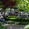outer walking ring. <br /> Scenes, people and horses at The July Sale at Fasig-Tipton near Lexington, Ky. on July 12, 2021.