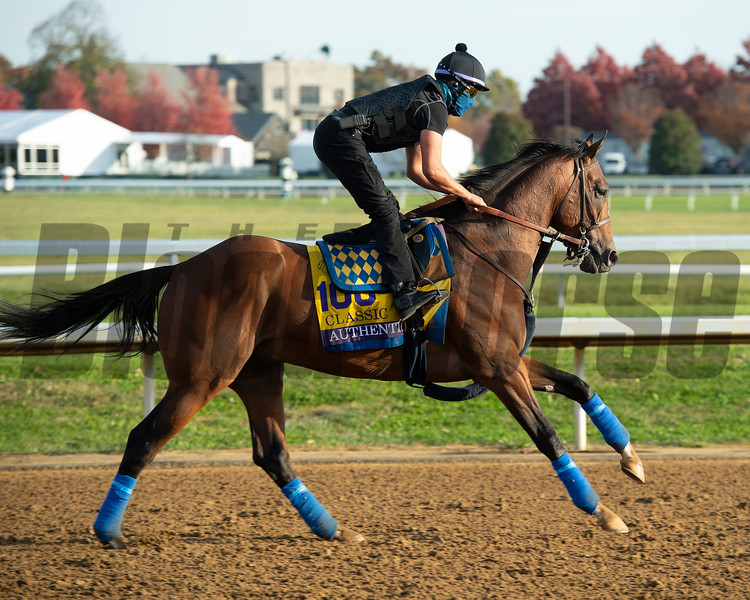Authentic<br /> Breeders' Cup horses at Keeneland in Lexington, Ky. on November 5, 2020.