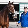 A Flying Start graduate, Gerry Duffy ,with one of his favorite mares Kareena in foal to Quality Road, now is the Stonerside and Raceland Farm Manager for Godolphin near Paris, Ky on Feb. 6, 2021.
