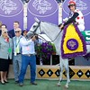 Connections of World Approval celebrate after winning the Breeders Cup Mile on November 4, 2017. Photo by Skip Dickstein.