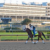 Art Collector - Morning - Churchill Downs - 083020. Photo: Anne M. Eberhardt