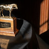 gold Horse of the Year award<br /> Eclipse Award scenes at Spendthrift Farm near Lexington, Ky., on Dec. 22, 2020.