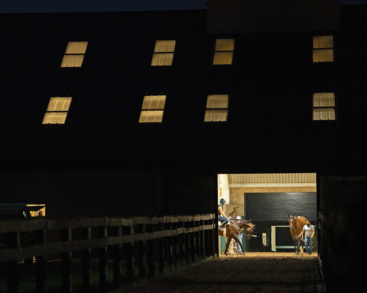 Caption: view of training barn after the first set that went out at 5:30 am.<br /> A native of Oklahoma, Heath started working at WinStar Farm on October 10, 2014, and became the farm trainer in October of 2018. Presently he has about 100 horses in training at the WinStar Farm training center, where they have a 7 1/2-furlong main track and 3/4 of a mile undulating turf gallop.<br /> Daily Life series on Destin Heath, farm trainer at WinStar Farm on Aug. 11, 2020 WinStar Farm in Versailles, KY.