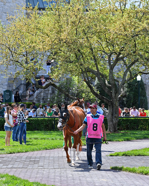 Scenes at Keeneland. April 14, 2017 Keeneland in Lexington, Ky.