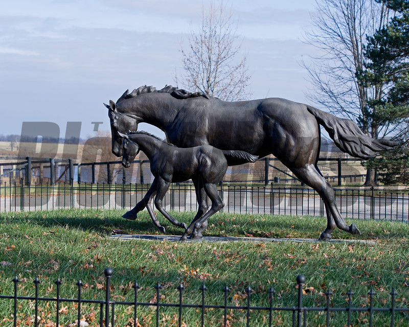 Michael Cavey and Nancy Temple (married), both veterinarians, at their Respite Farm near Paris, Ky. on Dec. 22, 2016.<br /> Statue is Playa Maya with her 2008 foal (named Uncle Mo).