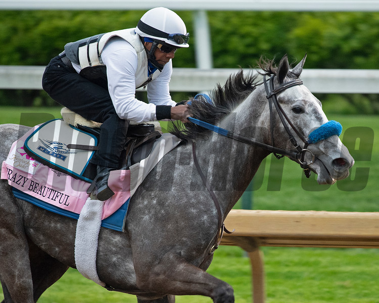 Crazy Beautiful working<br /> Kentucky Derby and Oaks horses, people and scenes at Churchill Downs in Louisville, Ky., on April 24, 2021.