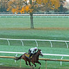 Tiz the Law with Heather Smullen works. <br /> Breeders' Cup horses at Keeneland in Lexington, Ky. on October 31, 2020.
