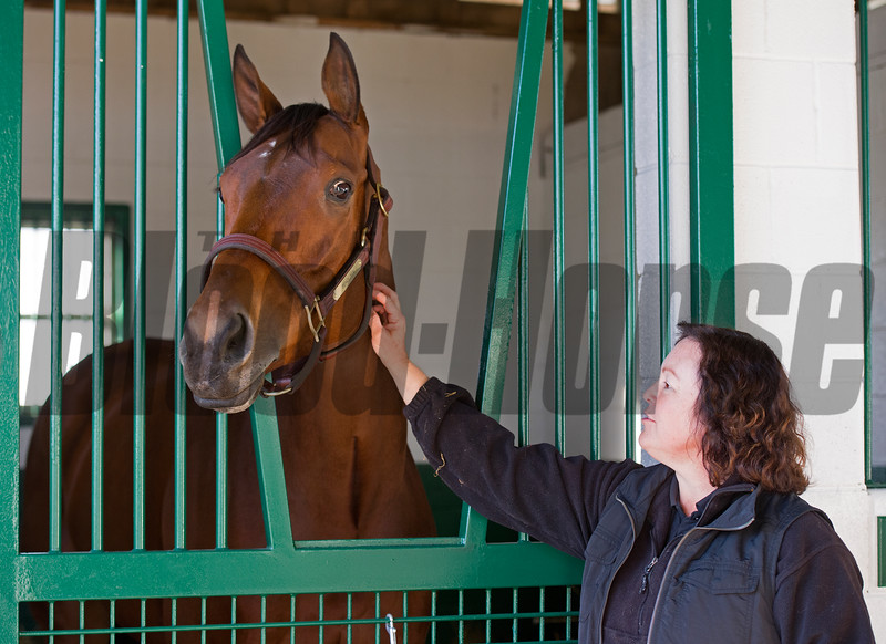 with broodmare manager Aimee Compton<br /> Beholder arrives at Spendthrift Farm in Lexington, Ky., on Nov. 21, 2016, in Lexington, Ky.