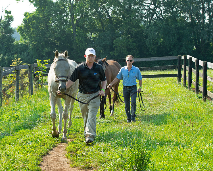 Caption:  Student and barn assistant Kip Ginsburg leads in horse followed by Remi Bellocq<br /> BCTC equine school and NARA in Lexington, Ky., and Thoroughbred Training Center, on July 6, 2020 BCTC in Lexington, KY.