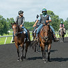 Caption:  (L-R): Juar Carlos Perez on Marcello, Oscar Velazquez on pony Stumbles and right rear is Mike Heath on Shaima.<br /> A native of Oklahoma, Heath started working at WinStar Farm on October 10, 2014, and became the farm trainer in October of 2018. Presently he has about 100 horses in training at the WinStar Farm training center, where they have a 7 1/2-furlong main track and 3/4 of a mile undulating turf gallop.<br /> Daily Life series on Destin Heath, farm trainer at WinStar Farm on Aug. 11, 2020 WinStar Farm in Versailles, KY.