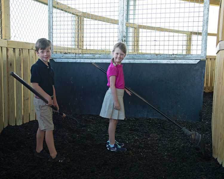 Caption: (L-R): Aidan O'Meara Jr., 7, and Julia O'Meara, 5,  help with raking out the walker, used for sales prep<br /> Aidan and Leah O'Meara at Stonehaven Steadings near Versailles, Ky. on Aug. 7, 2020 Stonehaven Steadings in Versailles, KY.