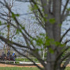 Caption: training scene<br /> Training at Silver Springs Training, part of Silver Springs Stud, near Lexington, Ky.,  on April 8, 2020 Silver Springs in Lexington, KY.