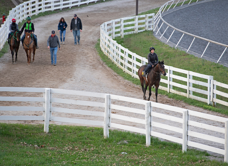 Scene<br /> Morning sales and racing scenes at Keeneland in Lexington, Ky., on April 4, 2019