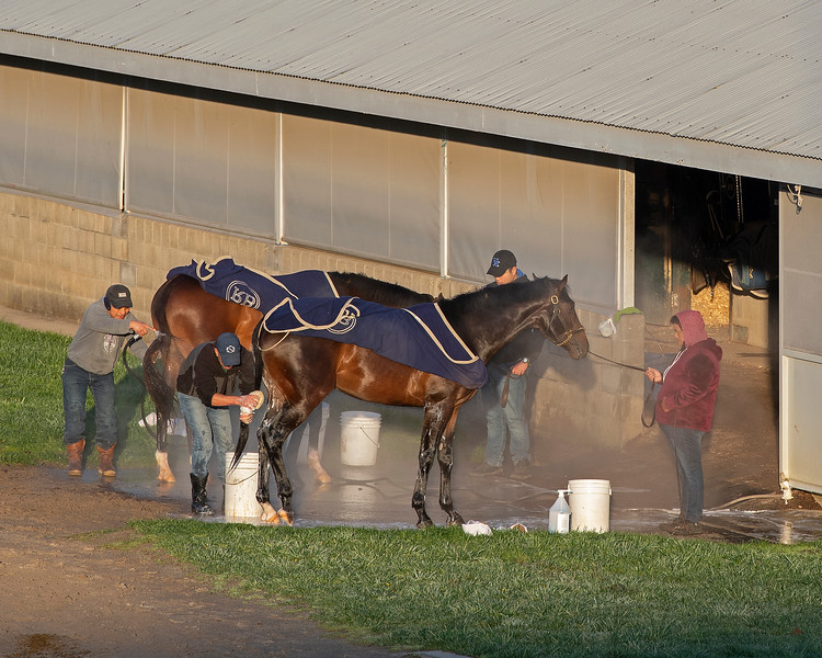 Caption: bath time at a Rice Road barn<br /> Behind the Scenes at Keeneland during Covid19 virus and the people, horses, and essentials needed to take care of race horses on April 2, 2020 Keeneland in Lexington, KY.